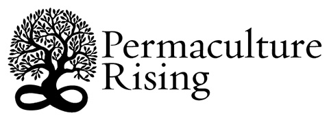 Permaculture Rising
